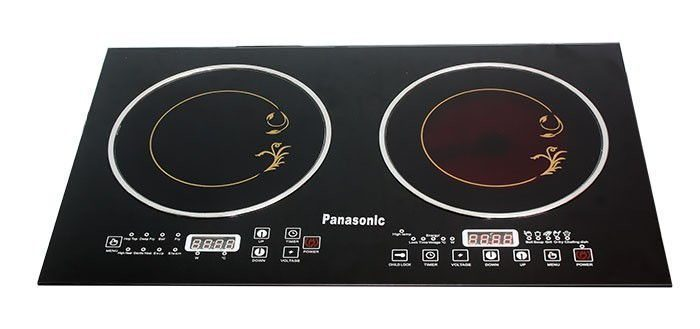 Panasonic HD01