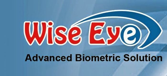 Wise eye Logo