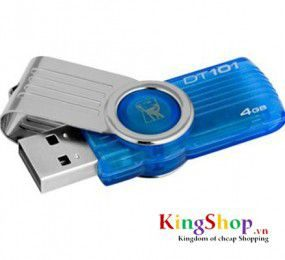 USB Kingston 4GB DT101